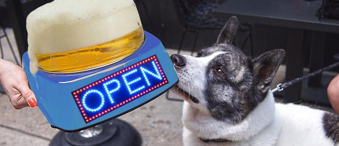 Bars in Philadelphia Open on New Year's Day