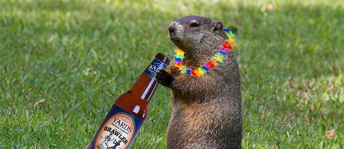 Beer for Breakfast on Groundhog Day at Grey Lodge Pub