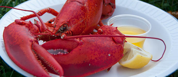 Enliven Your Drinks With Lobster & Crab Deals
