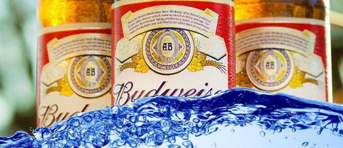 Class Action Suits Accuse Anheuser-Busch of Watering Down Beer