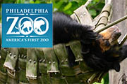 The Philadelphia Zoo Will Now Serve Alcohol