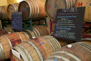 Wine Bar | Check Out These Wineries and Vineyards in Cape May