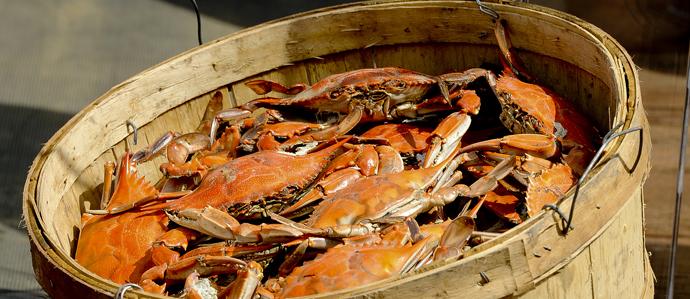 Varga Bar Hosting 4th Annual Crab Boil Aug. 22 - 24