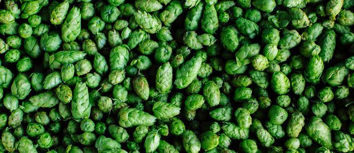 Treat Yo' Self to an Invigorating Microbrew Soak at Oregon's First Beer Spa