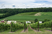 Wine Bar | 3 Lehigh Valley Wineries To Visit This Weekend
