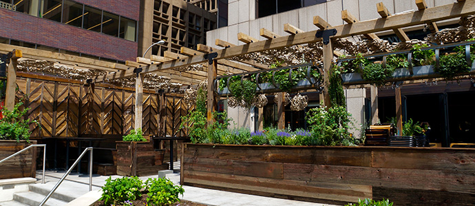 Harper's Garden is Rittenhouse's Newest Urban Oasis
