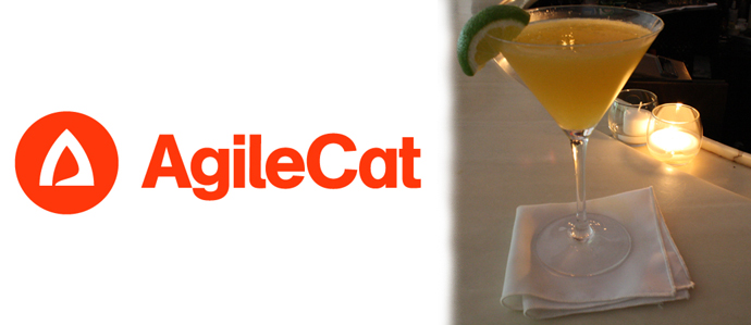 AgileCat Gets a Cocktail for Charity