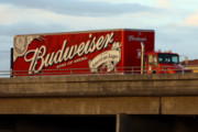 Craft Beer Philadelphia | US Justice Department to Investigate AB-InBev After Complaints of the Company Pushing Craft Beer out of Distributors | Drink Philly