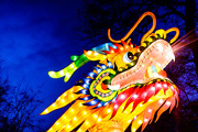Craft Beer Philadelphia | Franklin Square's Chinese Lantern Festival Will Feature a Beer Garden | Drink Philly