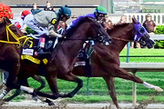 Wine Bar | Where to Watch the 141st Kentucky Derby in Philadelphia