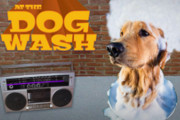 Grab Your Pup and Get Sudsy for a Good Cause at The Trestle Inn, Aug. 1