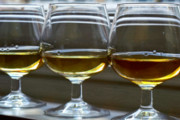 New Distillery Plans to Open in Runnemede