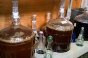 Craft Beer Philadelphia | Move Over Kombucha, Kefir Beer Could Be the Next Big Thing in Fermentation | Drink Philly