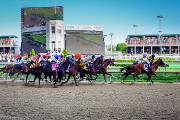 Wine Bar | Where to Watch the 143rd Kentucky Derby in Philadelphia