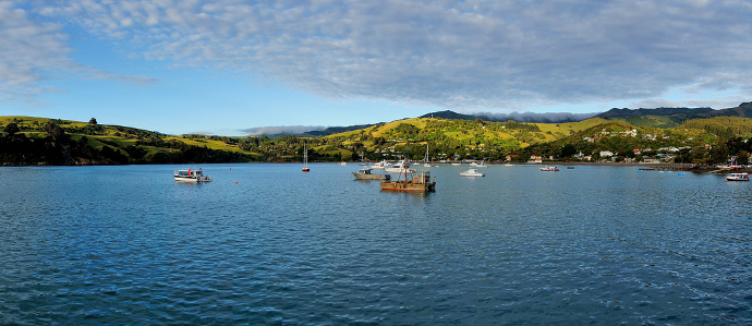 Hero Kiwis Built an Island in New Zealand For a New Year's Eve Party