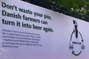 Craft Beer Philadelphia | Music Festival Attendees' Urine is Getting Transformed into Beer in Denmark | Drink Philly