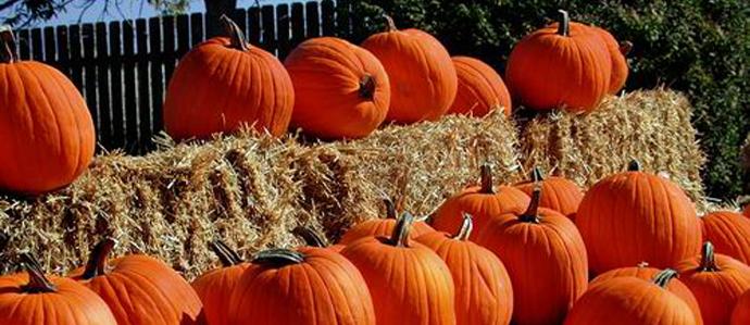 10/1: Charlie Brown Great Pumpkin Beer Fest @ The Institute
