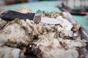 Test Your Oyster Skills at Shuckfest, April 23