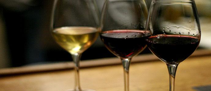Explore Organic and Natural Wines with Naturals at Noon at Panorama, June 14